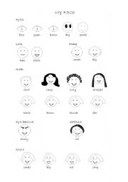 English Worksheet: My face - description