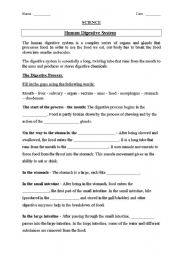 English teaching worksheets: Digestive system