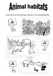 animal worksheet new 187 animal habitats worksheets grade 1. Black Bedroom Furniture Sets. Home Design Ideas