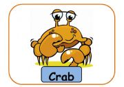 English Worksheets: animals flashcards part 6