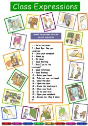English Worksheets: Class Expressions 1/3