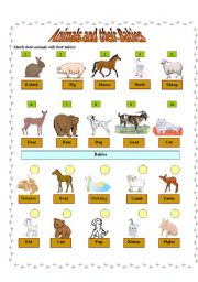 English Worksheets: Animals and their Babies - Pictionary