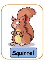 English Worksheets: ANIMALS FLASHCARDS PART 7