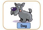 English Worksheets: ANIMALS PART 10