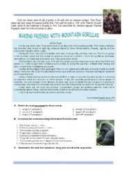 Making friends with mountain gorillas