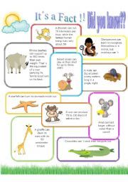 English Worksheet: Animals CAN/CAN´T