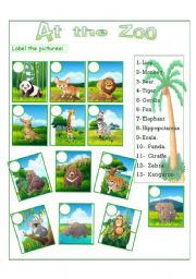 English Worksheets: at the zoo