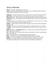 English Worksheet: The body - internal organs