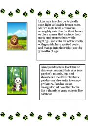English Worksheets: Animal Kingdom