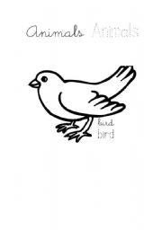 English Worksheets: Write Animals1/2