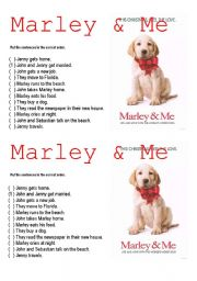 English Worksheet: Marley & Me Video activity