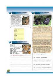 English Worksheets: animal fact file