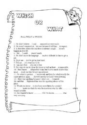 English Worksheets: WHICH or WHAT
