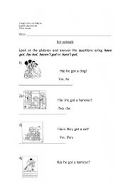 English Worksheets: has got /hasn�t got with questions
