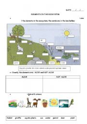 English Worksheet: elements in the ecosystem