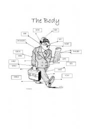 English Worksheets: The Body.in detail
