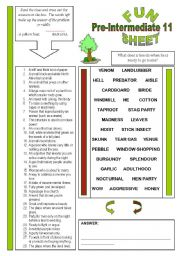 English Worksheets: Fun Sheet Pre-Intermediate 11