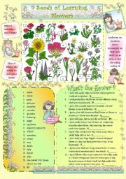 English Worksheet: Seeds of Learning - Flowers -
