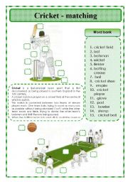 English Worksheet: Cricket -matching