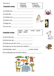 English Worksheet: Classify the animals