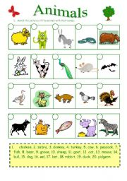 English Worksheets: Animals (27.08.09)