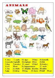 English Worksheets: wildlife animals