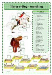 English Worksheet: Horse riding - matching exercise