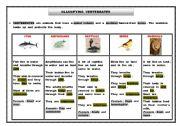 English Worksheet: Classifying animals - vertebrates
