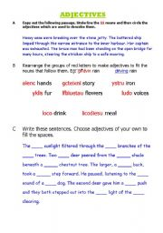 English Worksheets: Nouns and adjectives
