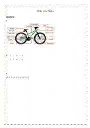 English Worksheet: The bicycle solutions