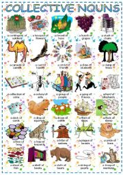 English Worksheets: Collective nouns + of