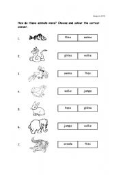 English Worksheets: How Animal moves