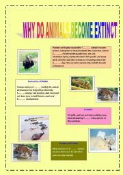 English Worksheets: Animals are becoming extinct
