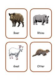 English Worksheets: ANIMALS FLASHCARDS 3/3