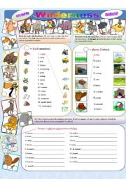 English Worksheets: Let�s visit the wilderness!