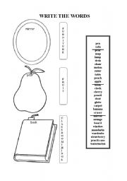 English Worksheets: Write the words