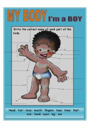 English Worksheets: My body BOY ****UPDATED**** B&W VERSION INCLUDED