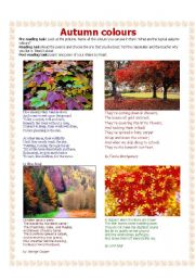 English Worksheet: Autumn colours - a poetry lesson