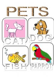 English Worksheets: animals flashcard
