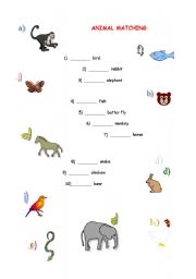 English Worksheets: Animal Matching