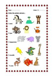 English Worksheets: Circle the correct picture