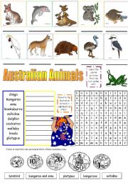 English Worksheets: AUSTRALIAN ANIMALS (PART 2)