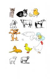 English Worksheet: Animals Mothers and Babies 1