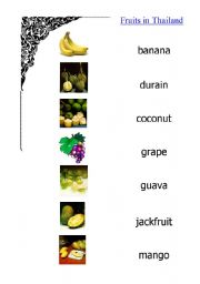 English Worksheet: Fruits in Thailand