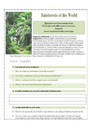 English Worksheet: Rainforests of the world