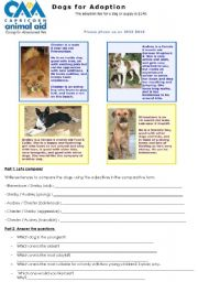 English Worksheets: Dogs for Adoption