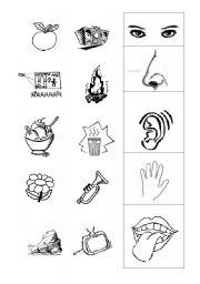 five senses esl worksheet by memiranda. Black Bedroom Furniture Sets. Home Design Ideas
