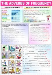 English Worksheet: THE ADVERBS OF FREQUENCY