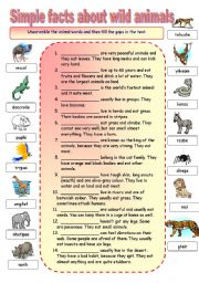 English Worksheets: Simple facts about wild animals gap fill