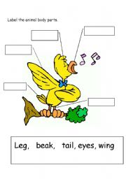 parts of animal an easy worksheet for learning parts of bird s body ...